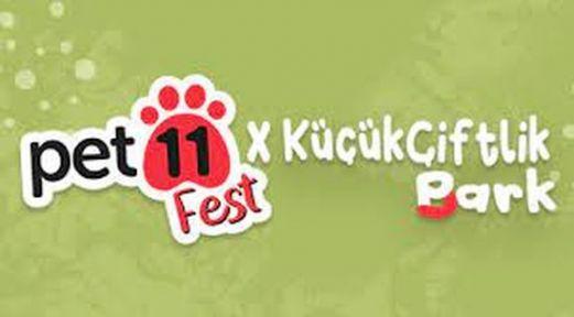 Bu festival çok farklı!