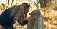 Aslan Kraliçe Animal Planet ekranlarında...