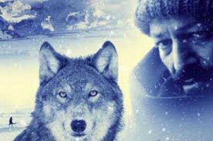 """TRT'den 'Saraybosna Film Festivali"""" Çıkarması"""
